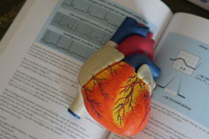 29. septembar – Svetski dan srca